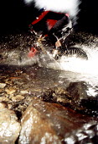 Mountain bike rider splashing through a stream in woods. Pembrokeshire. South Wales. - Paul Box - 14-07-2000