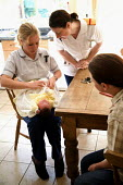 A healthcare nurse and a student nurse visit a newborn baby and mother at home, North Wales. - Paul Box - 18-08-2006