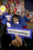 Children from a ethnic diversity, learning the Welsh language. At Kitchener Primary school, Cardiff. - Paul Box - 2000s,2005,aid,assistance,BAME,BAMEs,bilingual,black,bme,BME minority ethnic,bmes,boy,boys,card,cards,child,CHILDHOOD,children,class,classes,classroom,classrooms,communicating,communication,condition,