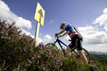 Mountain cycling in Selkirk, Scotland. - Paul Box - 30-07-2006