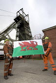 Tower Colliery,Wales the last deep pit mine in Wales closes. 239 Welsh miners scraped together 8,000 a piece to keep open a mine that British Coal had declared worthless. Miners with mixed emotions le... - Paul Box - 2000s,2008,capitalism,capitalist,coal,coalfield,collieries,Colliery,communities,community,deep,dust,EBF,EBF Economy,Economic,Economy,energy,final,flag,flags,hard hat,hat,hats,Industries,industry,job,j