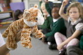 Pupils being taught about the learning method, of 7 Dimensional Learning using puppets. At Westbury Park Primary School, in Bristol. - Paul Box - 2000s,2006,and,answer,answering,answers,arm,arms,BME Black minority ethnic,boy,boys,cat,cats,child,CHILDHOOD,children,cities,city,class,classes,classroom,classrooms,cuddly,curiosity,device,devices,dim