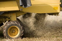 A combine harvester cuts a field of barley, Pembrokeshire, Wales. - Paul Box - 06-08-2009