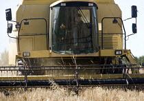 A combine harvester cuts a field of barley, Pembrokeshire, Wales. - Paul Box - 07-08-2009