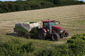 A rectangular hay baler makes hay bales , Pembrokeshire, Wales. - Paul Box - 08-08-2009