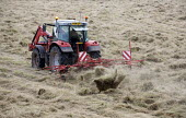 Turning cut grass for hay with a rake. Pembrokeshire, Wales. - Paul Box - 11-08-2009