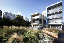 Grass beds by development Bristol docks, Bristol. - Paul Box - 16-10-2014