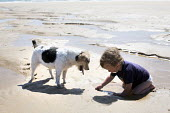 A toddler, plays with his dog at Freshwater West, Pembrokeshire. - Paul Box - 05-07-2014