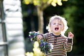 A toddler plays in a garden, Stratford Upon Avon. - Paul Box - 25-05-2014