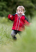 A toddler walks on the Welcome Hills, Stratford Upon Avon. - Paul Box - 26-05-2014