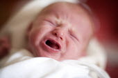 A newborn girl crying. Hospital Maternity ward. - Paul Box - 2000s,2008,babies,baby,birth,care,child,Childbirth,CHILDHOOD,children,cities,city,cry,crying,EARLY YEARS,face,faces,female,females,girl,girls,giving birth,hea,health,healthcare,hospital,hospitals,In l