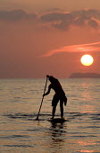 A stand up paddle surfer at Newgale beach in the sunset, Pembrokeshire. - Paul Box - 27-09-2008