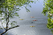 Canoes paddling in Lake Windermere, Lake District. - Paul Box - 26-04-2007