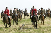 A stag hunt riding over Exmoor at Dunkery Beacon. - Paul Box - 2000s,2007,animal,animals,attire,boots,breeches,cap,country,countryside,dog,dogs,domesticated ungulate,domesticated ungulates,eni,environment,Environmental Issues,equestrian,equine,Exmoor,horse,Horse