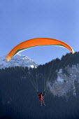 Paraglider at the Chateaux dOex Balloon Festival, Switzerland. - Paul Box - 22-01-2006