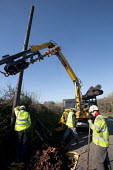 A subcontractor for BT openreach replacing old roadside and erecting new telegraph poles which carry overhead telephone cables using a specialised vehicle.. Wales. - Paul Box - 05-03-2010