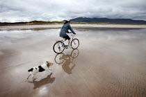 A cyclist riding with her dog on Brandon bay, Kerry, Ireland - Paul Box - Irish,2010,2010s,animal,animals,beach,BEACHES,bicycle,bicycles,BICYCLING,Bicyclist,Bicyclists,bike,bikes,canine,cloud,clouds,coast,coastal,coasts,country,countryside,CYCLE,cycles,cycling,Cyclist,Cycli