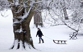 A boy sledges in St Andrews Park, Bristol. - Paul Box - 2010,2010s,bench,benches,boy,boys,child,CHILDHOOD,children,cities,city,CLIMATE,cold,conditions,freezing,frozen,ice,juvenile,juveniles,kid,kids,landscape,LANDSCAPES,Leisure,LFL,LIFE,male,outdoors,outsi