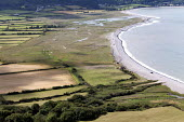 National Trust Holnicote Estate in Porlock, the sea has been allowed to breach the shingle ridge sea defenses. Now that land floods behind the shingle, a new saltmarsh is rapidly developing. It is an... - Paul Box - 10-08-2011