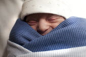 New born baby boy is swaddled. The mother is an IVF patient who has obstetric cholestasis a rare complication of pregnancy. Which is a build-up of bile acids in the bloodstream and liver. Southmead ho... - Paul Box - 29-09-2012