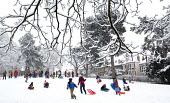 Children having fun in the snow, St Andrews Park , Bristol. - Paul Box - 2010s,2013,child,CHILDHOOD,children,cities,city,CLIMATE,cold,conditions,enjoy,enjoying,enjoyment,frozen,having fun,hill,hills,juvenile,juveniles,kid,kids,Leisure,LFL,LIFE,park,people,PLAY,playing,prec