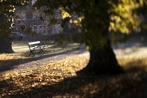 Autumn scene at St Andrews Park Bristol. - Paul Box - 11-11-2012