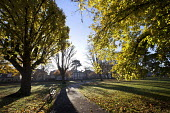 Autumn scene at St Andrews Park Bristol. - Paul Box - 2010s,2012,autumn,autumnal,beach,BEACHES,benches,cities,city,COAST,coastal,coasts,Council Services,Council Services,eni,environment,Environmental Issues,leaf,leaves,Leisure,LFL,LIFE,local authority,na