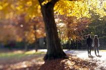 A couple walk through an Autumn scene Clifton, Bristol. - Paul Box - 11-11-2012