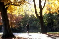 A jogger running through an Autumn scene Clifton, Bristol. - Paul Box - 11-11-2012
