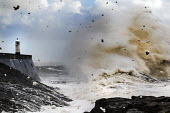 Storm waves smash into the seafront, lighthouse and seawall, Porthcawl - Paul Box - 2010s,2015,CLIMATE,Climate Change,coast,coastal,coasts,conditions,costal defences,danger,dangerous,dangers,defence,defense,defenses,degradation,DIA,eni,environment,Environmental,Environmental degradat