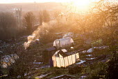 Sunrise, Ashley Hill Allotments, Ashley Down, Bristol. European Green Capital. - Paul Box - 19-01-2015