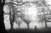Fog in St Andrews Park, Bristol. - Paul Box - 2010s,2015,bicycle,bicycles,BICYCLING,Bicyclist,Bicyclists,BIKE,BIKES,cities,city,CLIMATE,cold,conditions,Council Services,Council Services,cycle,cycles,cycling,Cyclist,Cyclists,exercise,exercises,exe