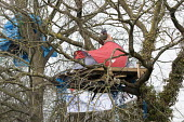 Stapleton Allotment tree-top protesters, Bristol. The protesters are objecting to the building on allotments and cutting down of trees for the MetroBus. - Paul Box - 12-03-2015