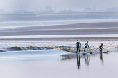 Surfers on The Severn bore tidal wave, on one of the largest tides of the year. Gloucestershire. - Paul Box - 21-03-2015