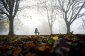 Clifton in the fog, Bristol - Paul Box - 2010s,2014,activities,adult,adults,autumn,autumnal,boy,boys,bridge,bridges,child,CHILDHOOD,children,cities,city,CLIMATE,conditions,EARLY YEARS,families,FAMILY,FEMALE,fog,foggy,juvenile,juveniles,kid,k
