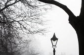 Streetlamp in the fog, Bristol - Paul Box - 2010s,2014,bridge,bridges,cities,city,CLIMATE,conditions,fog,foggy,outdoors,Park,parks,urban,wea,weather,winter,wintery