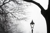 Streetlamp in the fog, Bristol - Paul Box - 30-11-2014