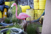 Dismaland a parody of Disneyland theme park by Banksy, Weston Super Mare. Pink plastic flamingo and oil drums at the Bemusement Park. - Paul Box - 27-08-2015