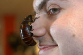 A man with a cockroach on his face - Paul Box - 2000s,2003,and,animal,animals,bug,bugs,cockroach,cockroaches,conquering,crawly,creature,creepy,eni environmental issues,entomophobia,face,FACES,fear,fearful,fighting,funny,Humor,HUMOROUS,HUMOUR,insect