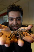 A man with a tarantula spider on his hands. - Paul Box - 2000s,2003,and,animal,animals,arachnophobia,BAME,BAMEs,big,black,BME,bmes,bug,bugs,conquering,crawly,creature,creepy,diversity,eight,eni environmental issues,entomophobia,ethnic,ethnicity,face,FACES,f