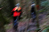Abstarct of mountainbikers riding in the woods , Bristol - Paul Box - 02-02-2004
