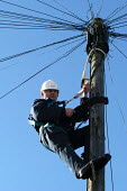 A British Telecom engineer works up telegraph pole - Paul Box - 20-03-2003