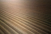A ploughed field in Herefordshire - Paul Box - 2000s,2004,agricultural,agriculture,capitalism,capitalist,country,countryside,EBF economy,eni environmental issue,farm,farmed,farming,field,fields,furrow,furrows,Industries,industry,land,maker,makers,