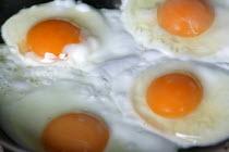 A pan of fried eggs. - Paul Box - 02-08-2004