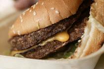 Young woman eating a burger. - Paul Box - 28-11-2004