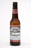 Beer bottles. - Paul Box - 2000s,2003,alcohol,beer,bottle,bottles,brown,bud,budweiser,glass,LFL Lifestyle
