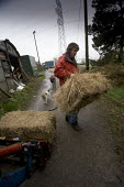 An impoverished diary farmer on run down farm in North Wales.The Farm has stopped farming as prices for milk and livestock are too low to keep operating. - Paul Box - 20-03-2005