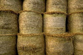 Stacks of rolled hay. - Paul Box - 05-12-2005