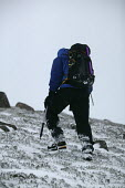 A hiker heads off in the snow on the Cairngorms. - Paul Box - 05-12-2005