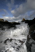 Spume from the sea. - Paul Box - 05-12-2005